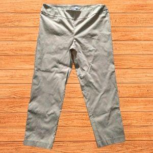 NWT Valerie Steven's size 20W pull on pants